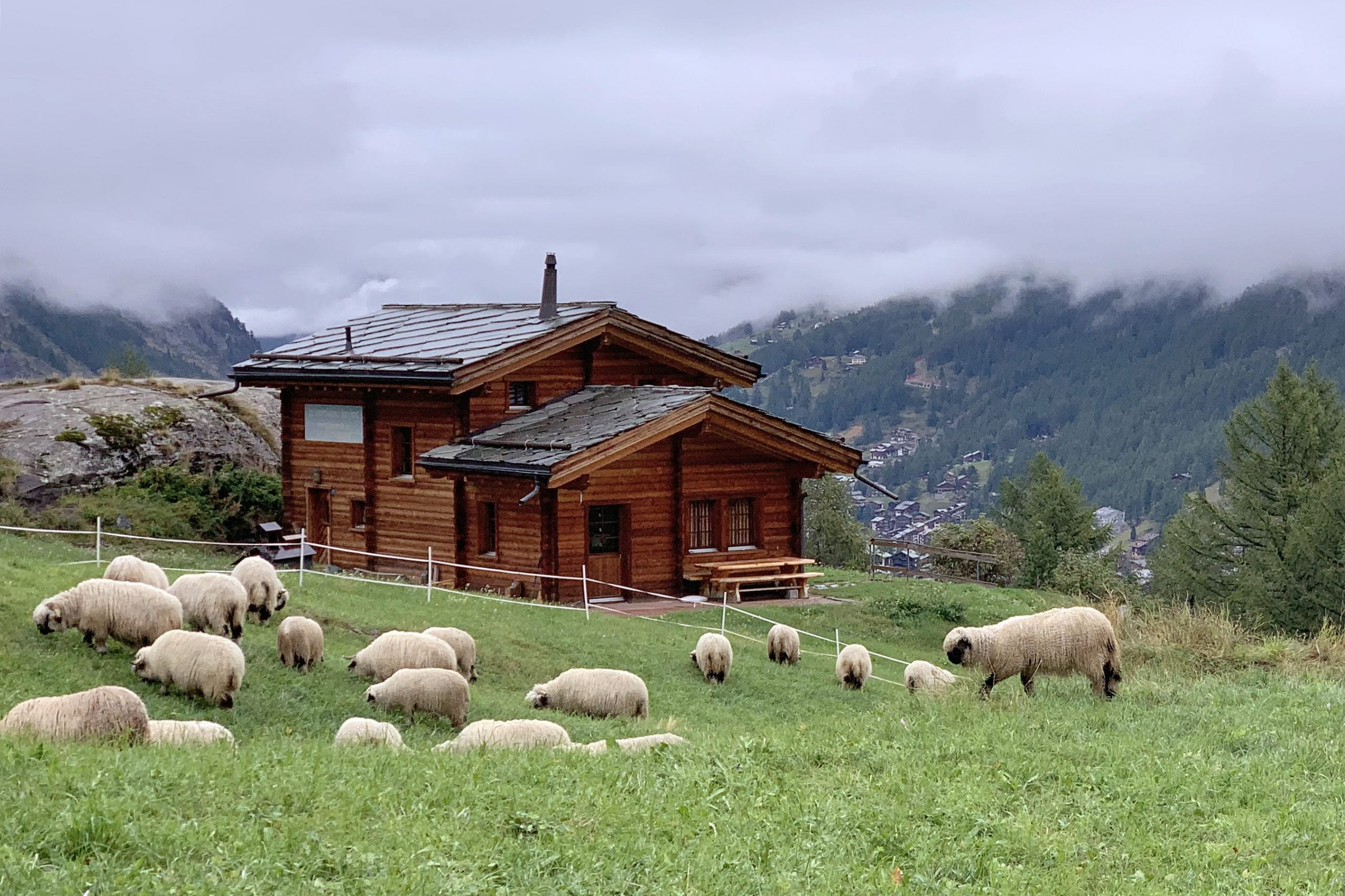 Switzerland could begin welcoming vaccinated visitors on 28 June - The Points Guy UK