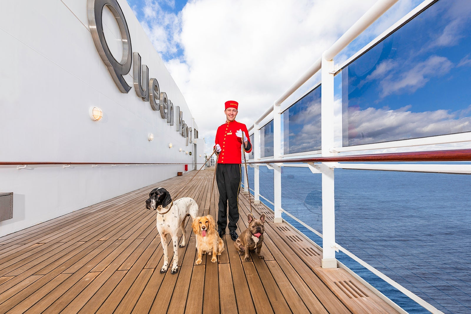 Can you cruise with your dog, cat or other pets? - The Points Guy UK