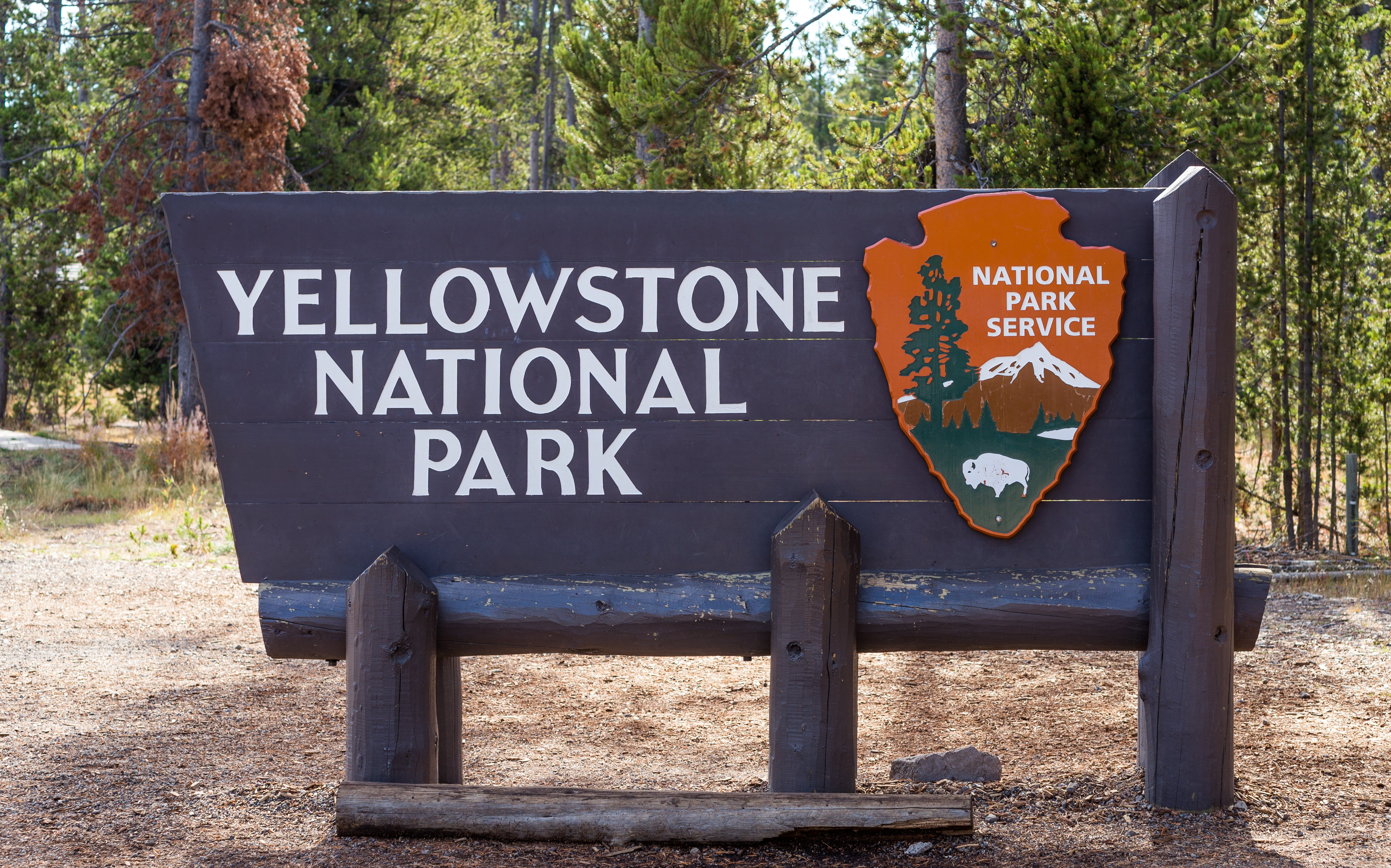 Bizarre Events Are Unfolding at Yellowstone National Park - The Points Guy