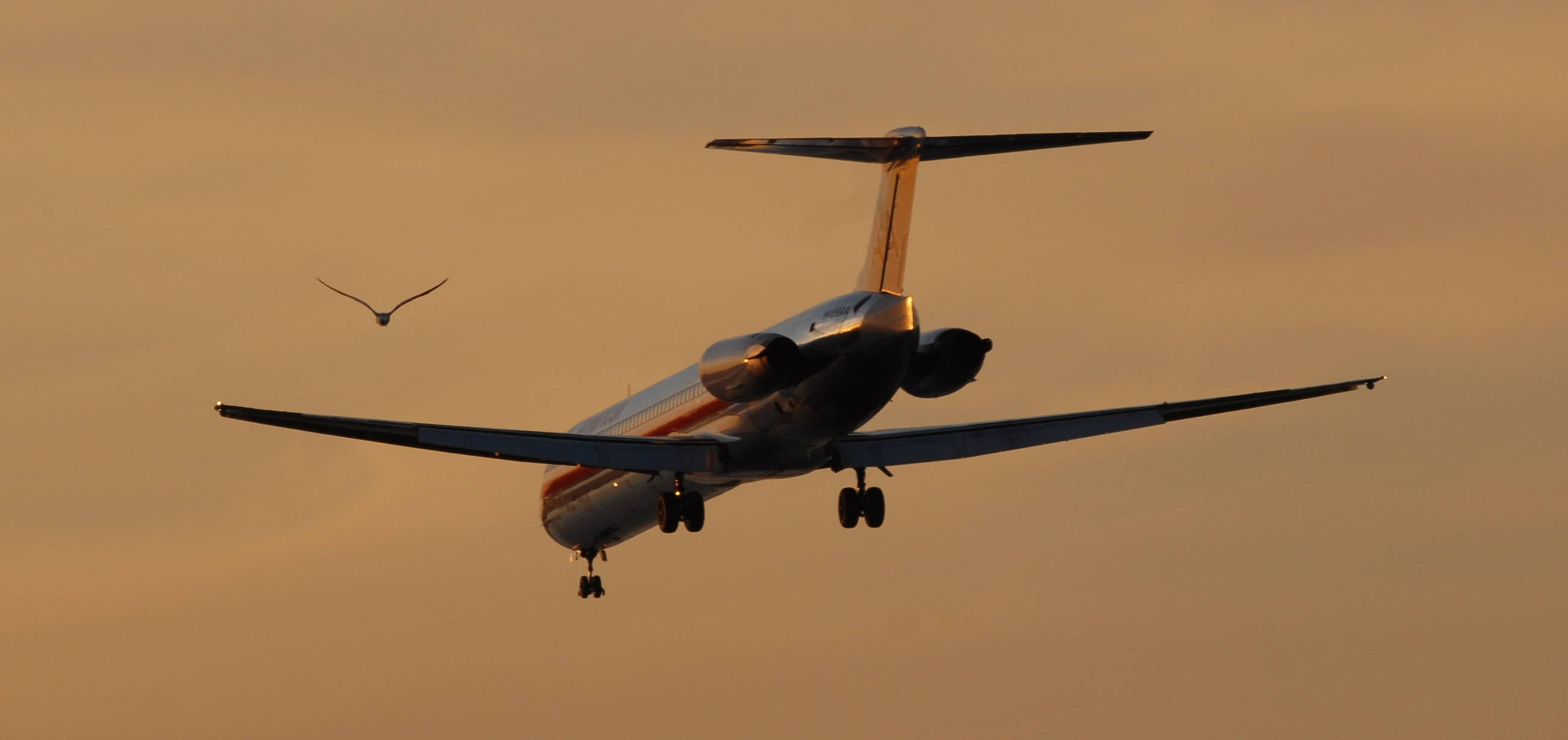Pretty, Shiny and Loud: Why Aviation Lovers Will Miss the MD-80