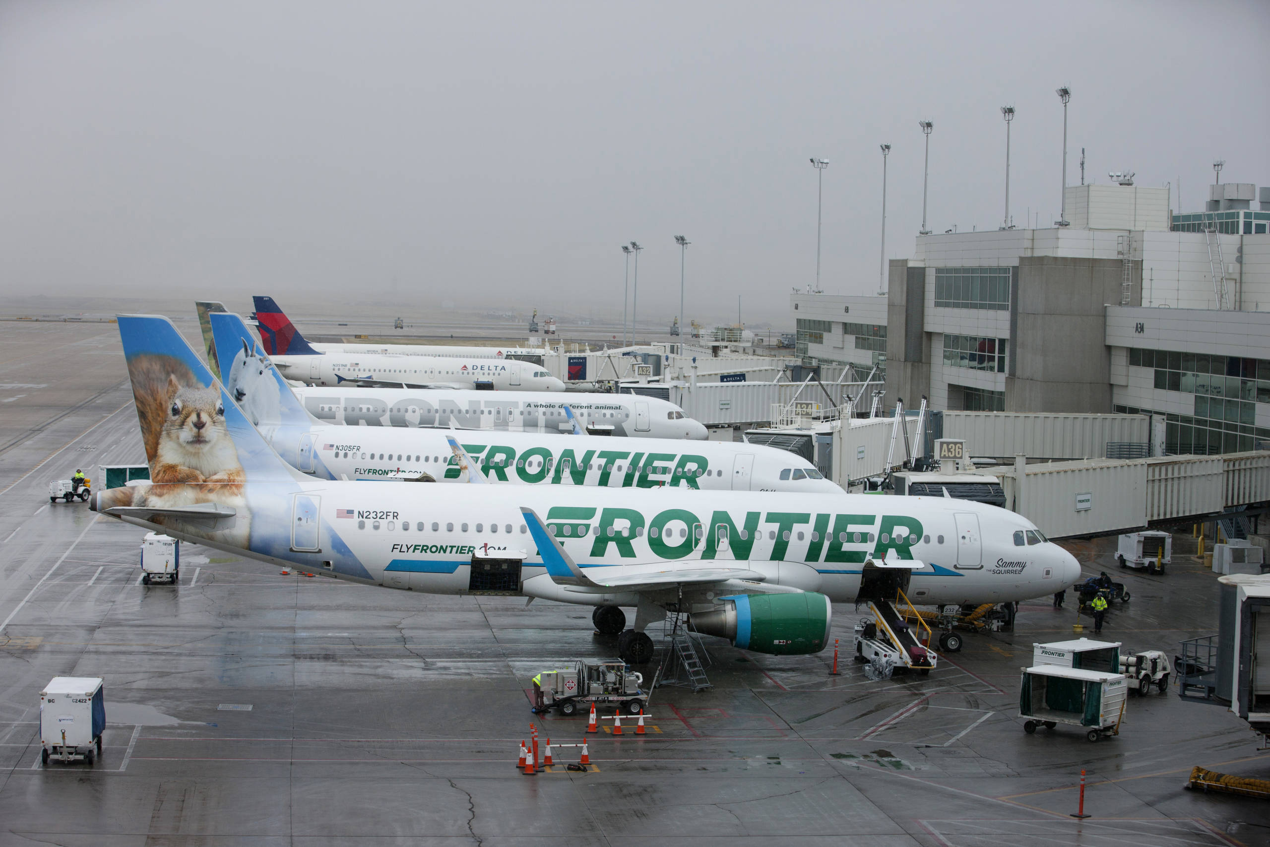 Frontier Airlines adds 5 more new routes, giving it a total of 13 in j... image