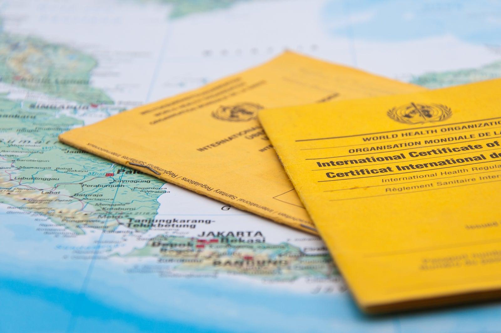 The future of international flying? IATA and Qantas push vaccine passports to restart travel