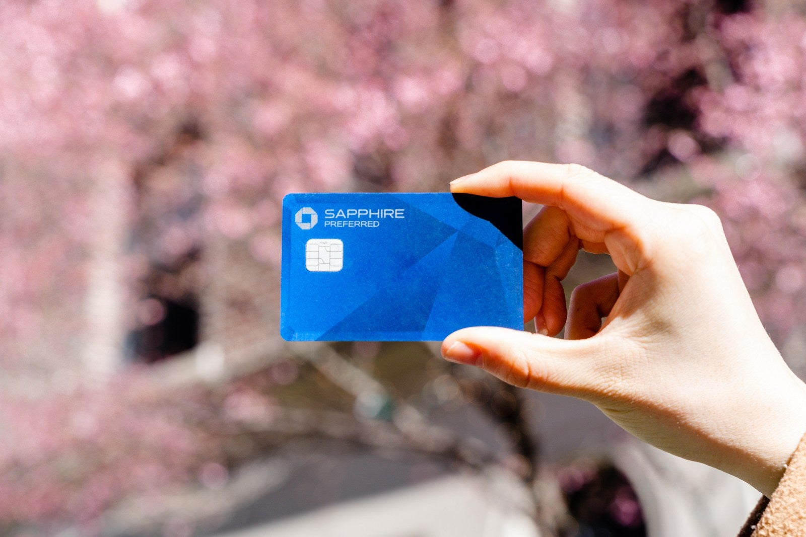 Chase Sapphire Preferred Card (Photo by Wyatt Smith/The Points Guy)