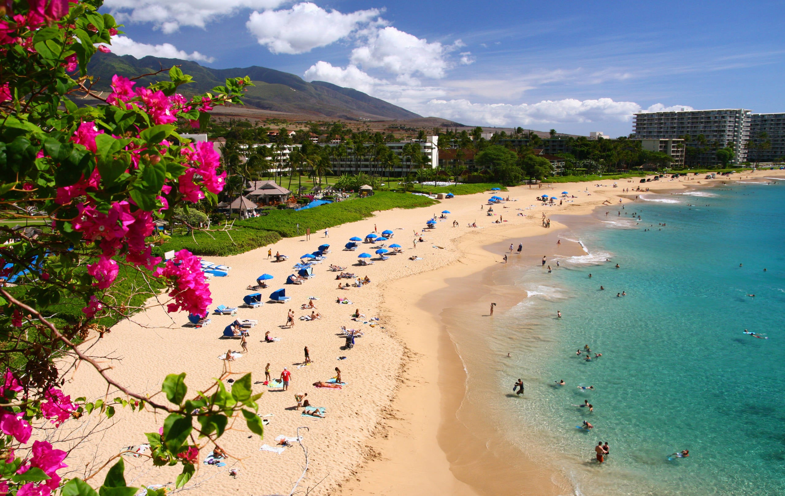 The best ways to get to Hawaii using points and miles