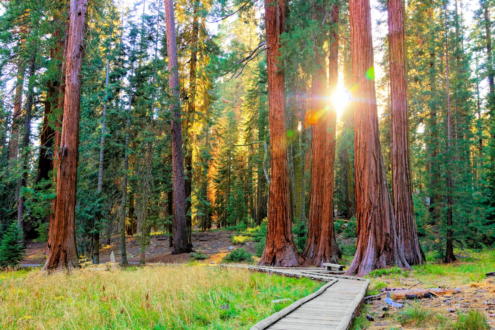 The 19 national parks every traveler needs to see at least once