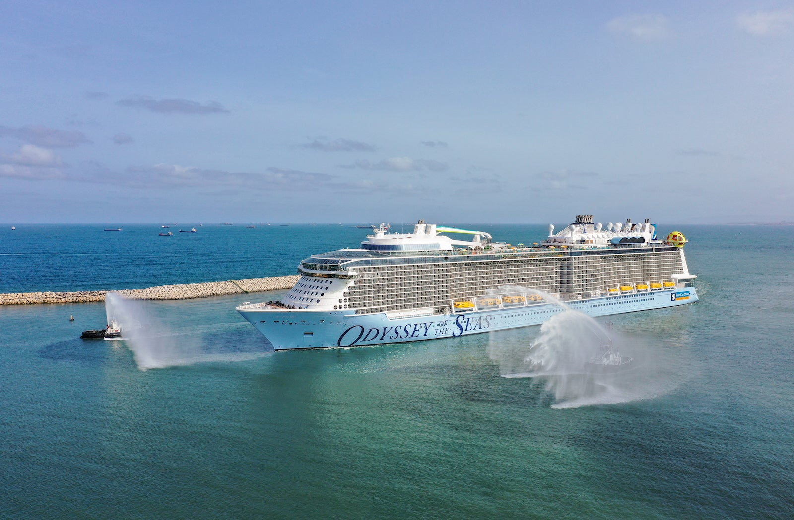 Cruise line CEOs: Challenges for industry remain, but 'future is bright' for cruising - The Points Guy